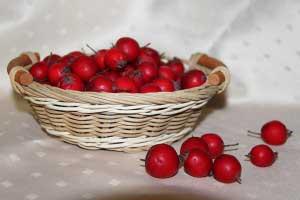 Рецепты средств для лечения болезней