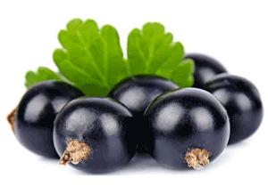 Кому нельзя есть смородину черную?