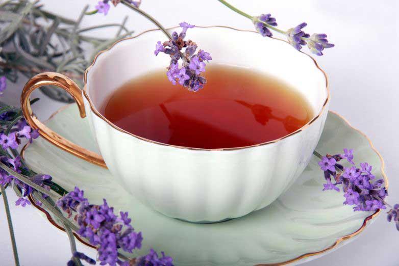малышек четвереньки, можно ли пить лаванду как чай оральные утехи горячих