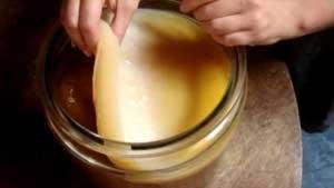 Как применять чайный гриб?