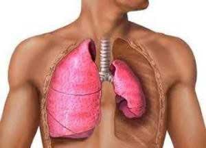Как определить туберкулез в домашних условиях?