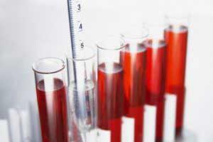 Какую роль в организме играют лейкоциты?
