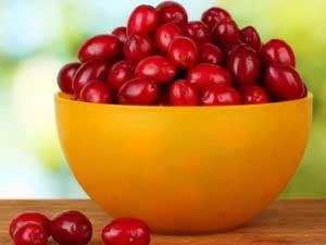 Полезная красная ягода