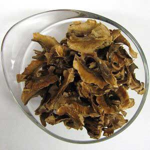 Чем полезны перегородки грецкого ореха?