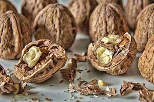В чем помогают перегородки из грецких орехов?